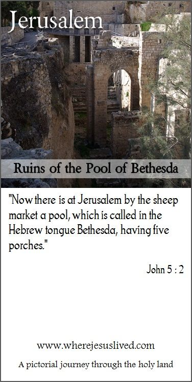 The Ruins Of The Pool Of Bethesda In Jerusalem Holy Land Places To Visit Via Dolorosa