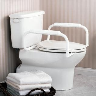 Marvelous These Safety Rails From Moen Add Security To Any Toilet Ibusinesslaw Wood Chair Design Ideas Ibusinesslaworg