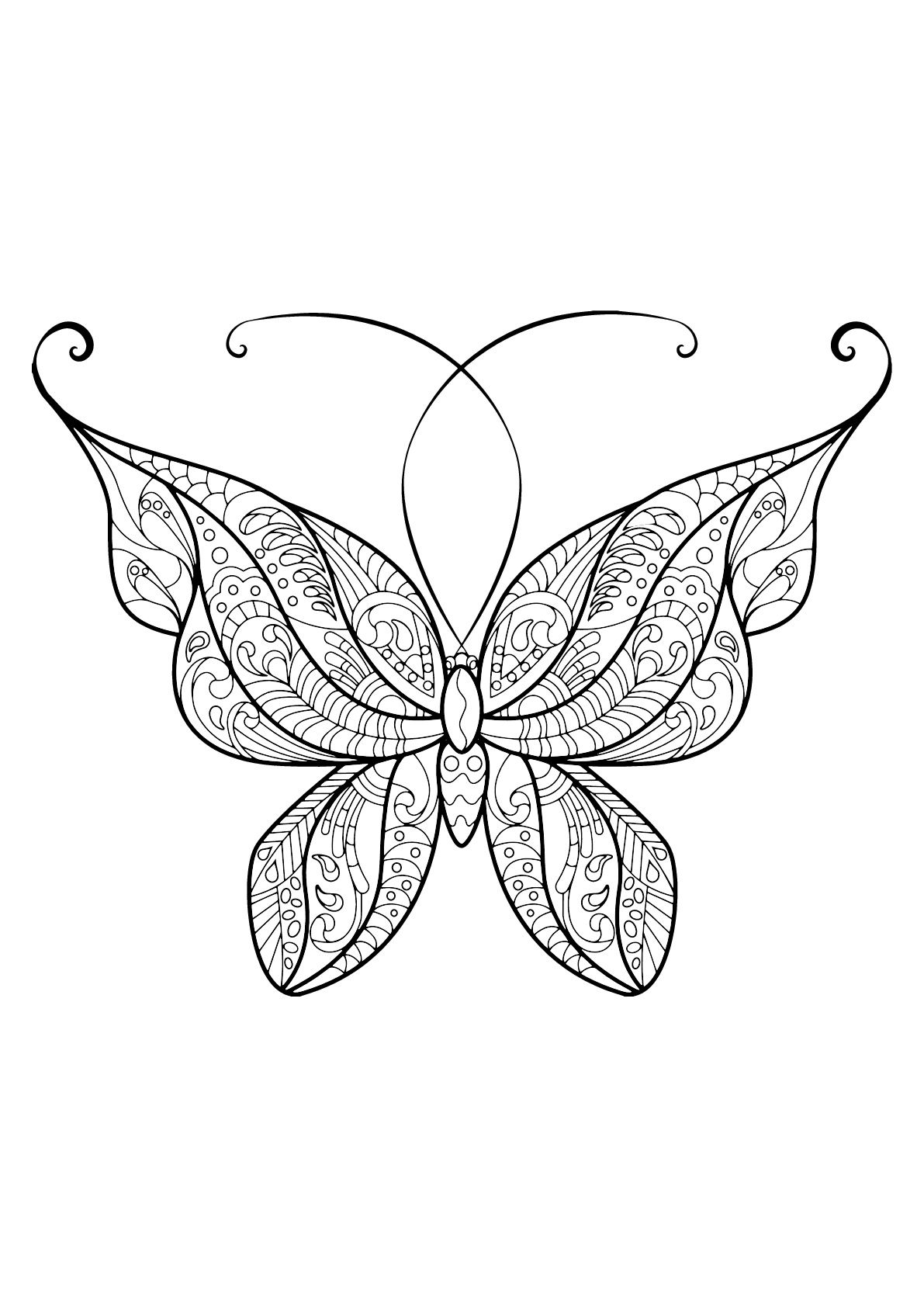 Pin On Adult Coloring Pages [ 1684 x 1191 Pixel ]