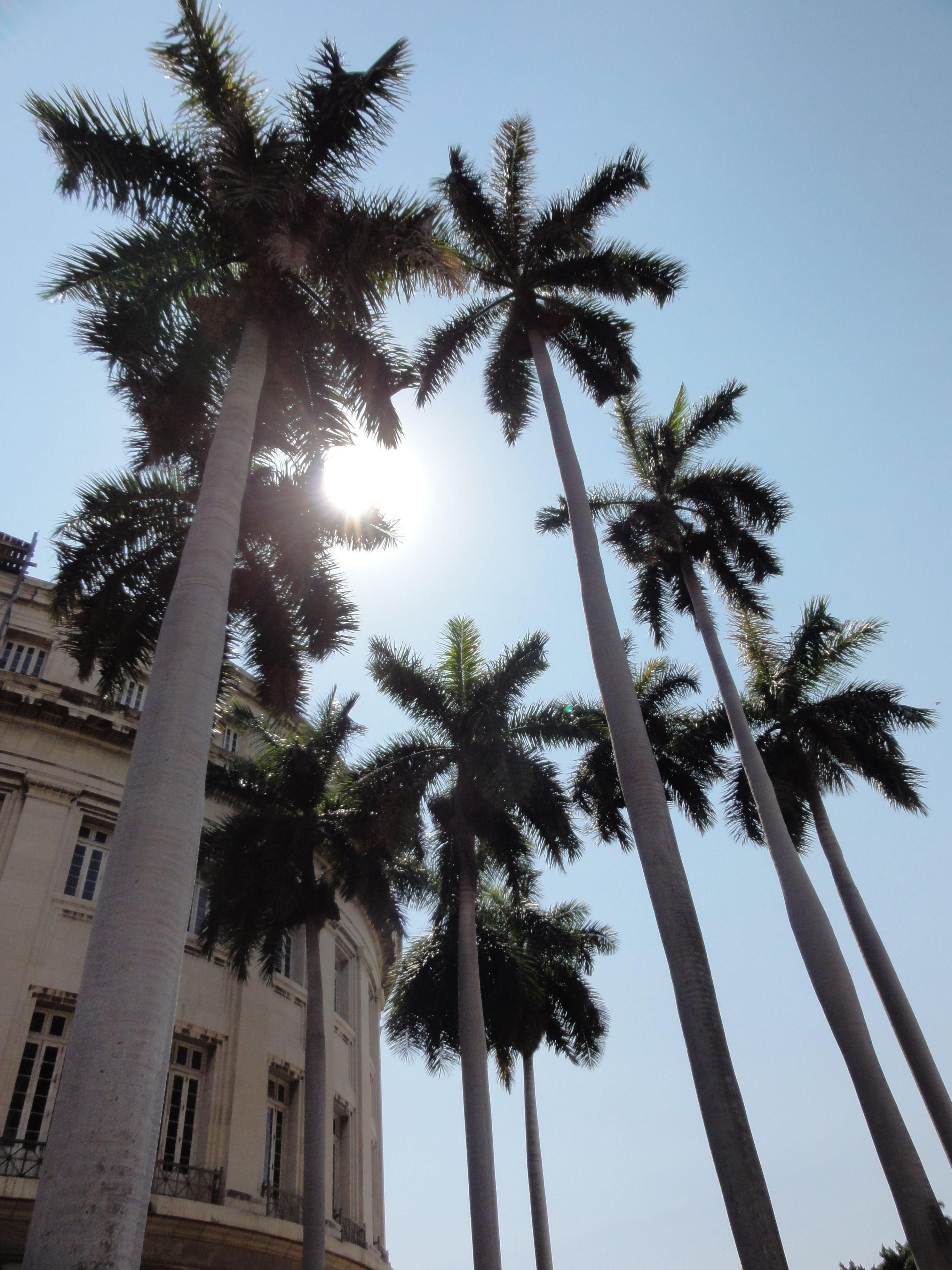 Love it! #Cuba