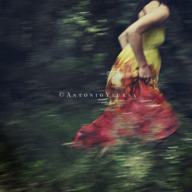 Down the rabbit hole © Antonio Ysursa