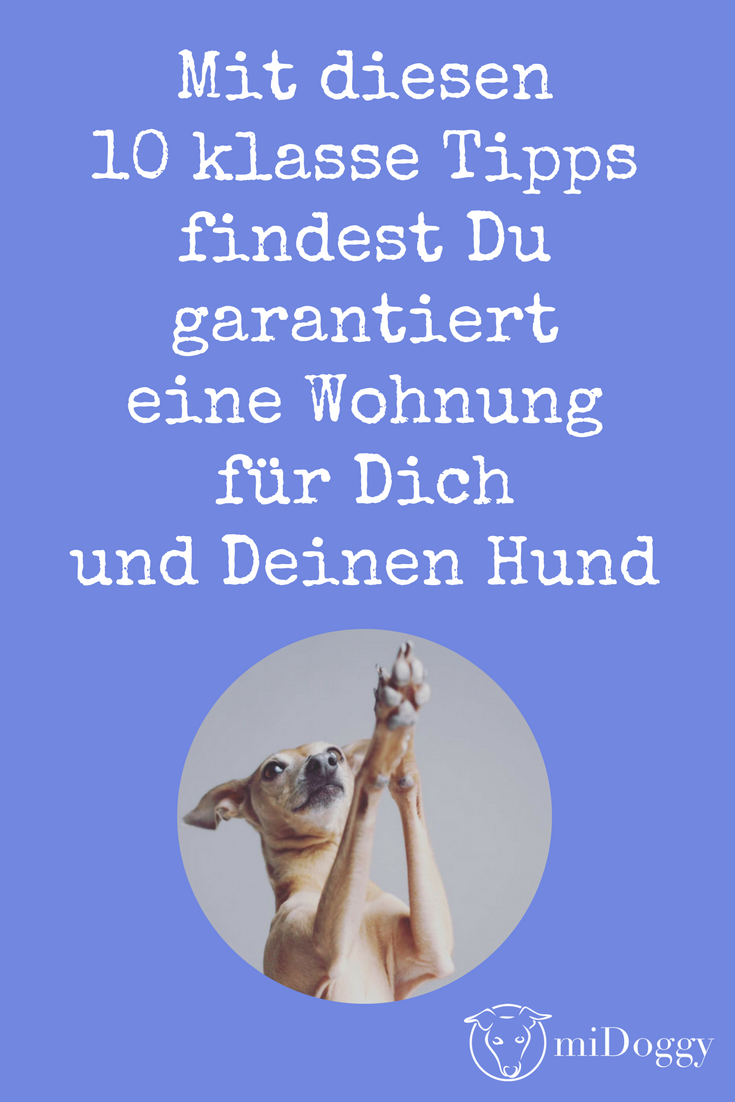 tipps zur wohnungssuche mit hund pinterest wohnung. Black Bedroom Furniture Sets. Home Design Ideas