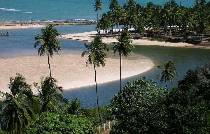 Dunas de Marape -  Maceió, Alagoas.
