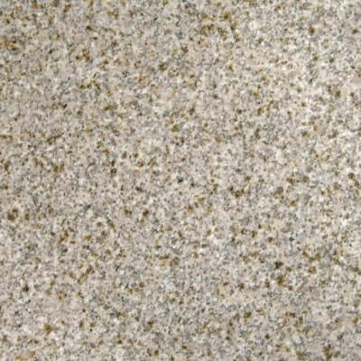Ms International Gold Rush 12 In X 12 In Polished Granite Floor And Wall Tile 5 Sq Ft Case Tgldrus1212 Granite Flooring Floor And Wall Tile Wall Tiles