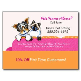 Pet Sitter Coupon Mailer Ad Yorkie Cat Couch Pink Postcard | Zazzle