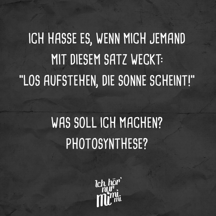 """Photo of I hate when someone wakes me up with this sentence: """"Get up, the sun is shining!"""" What should I do? Photosynthesis? – VISUAL STATEMENTS®"""
