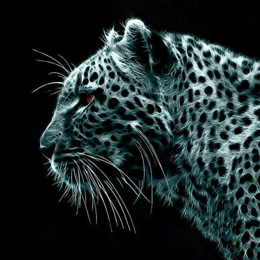 Fondos De Pantalla Animales, Leopardo