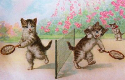 Vintage postcard cats playing tennis.. <3