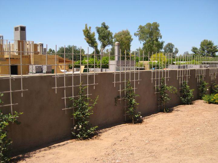 Trellis Designs Garden Trellis Designs Metal Garden Trellises | Arizona  Trellis   Gardening Trellises
