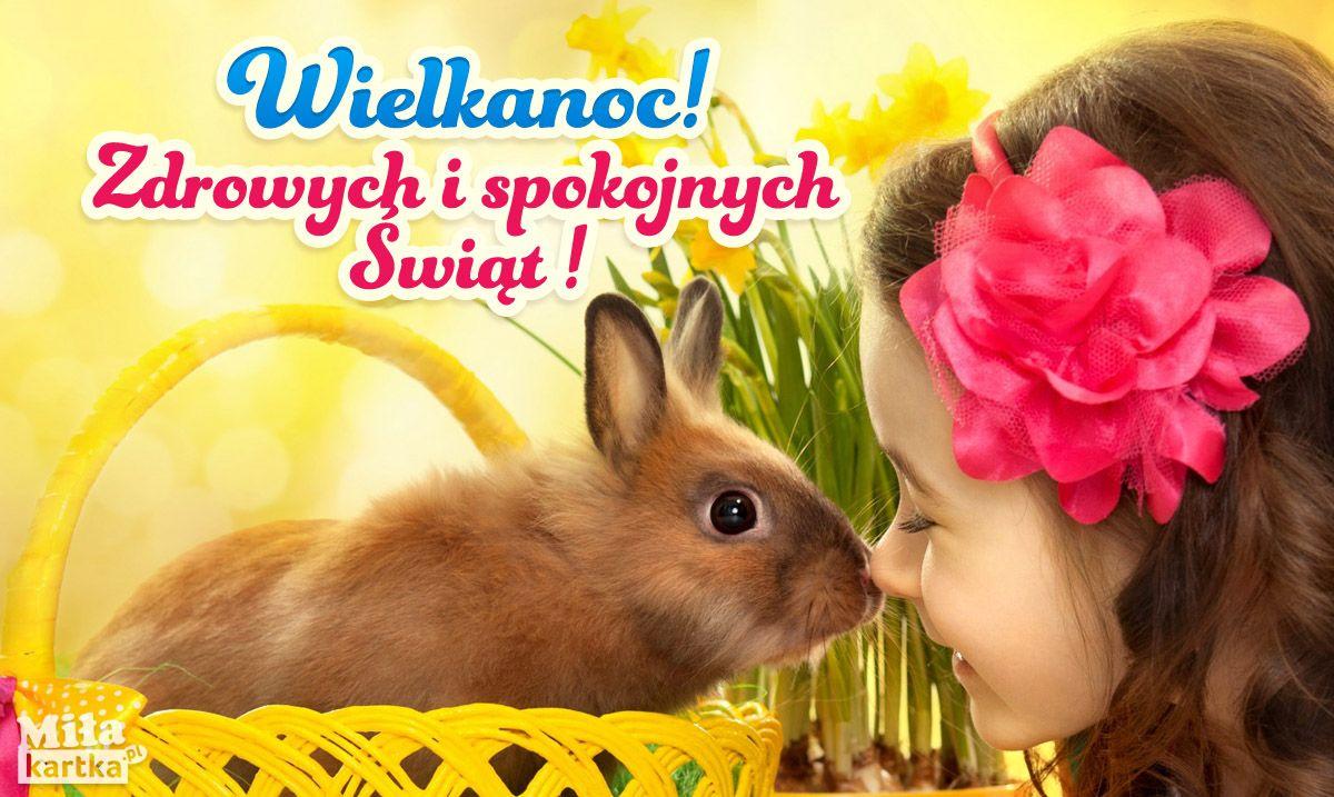 Kroliczek Wielkanocny Dla Ciebie Wielkanoc With Images