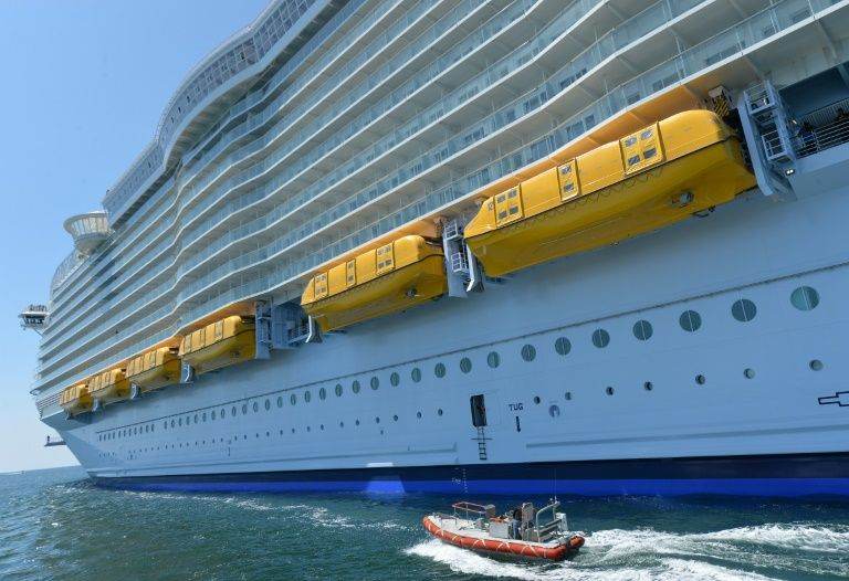 One killed in accident on world's biggest cruise ship: rescuers