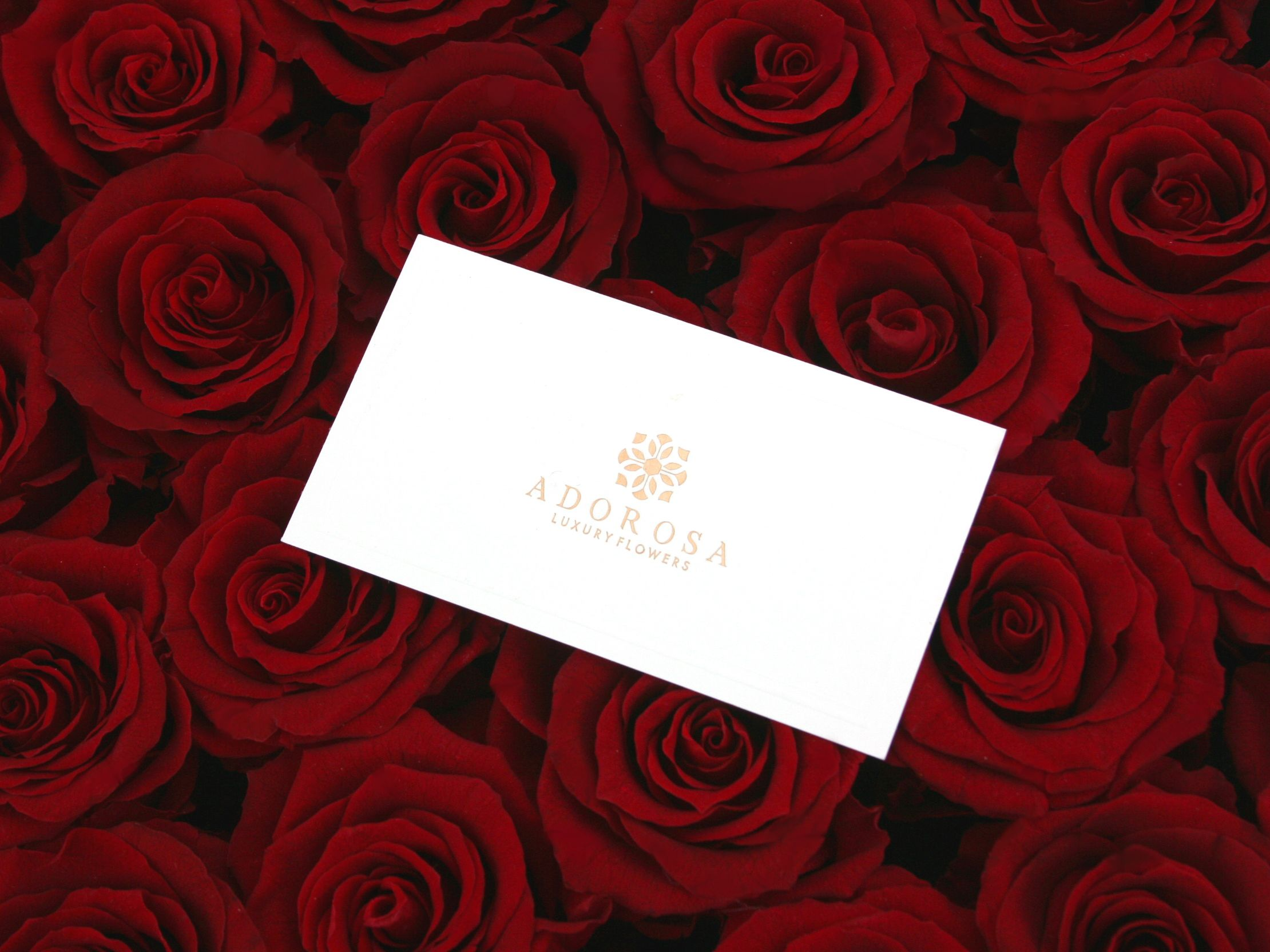We Are A Luxury Flower Boutique Based In Sydney And We Specialise In The Finest Quality Preserved Flower Luxury Flowers How To Preserve Flowers Flower Boutique