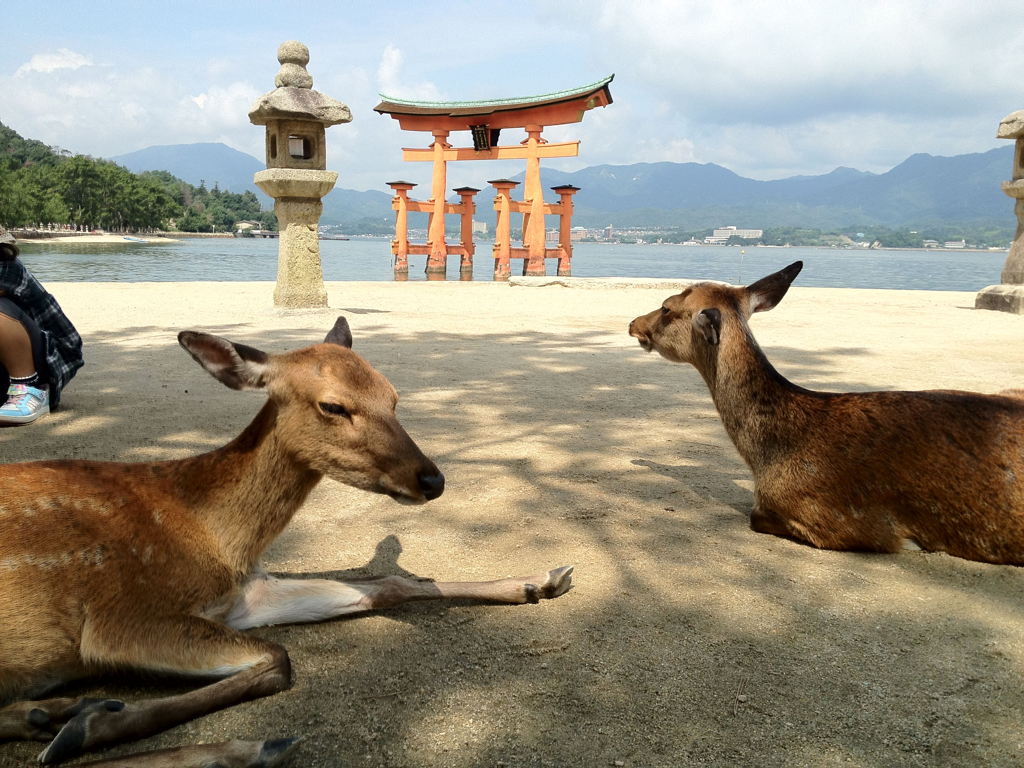 Itsukushima Shrine in Miyajima, HIROSHIMA
