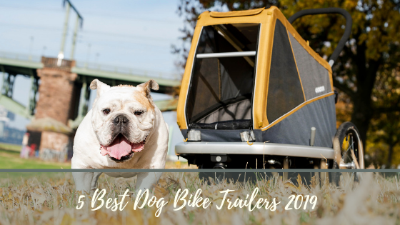 5 Best Dog Bike Trailers 2019 compared, cycle with your