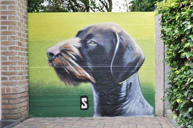 Dogs In Mechelen