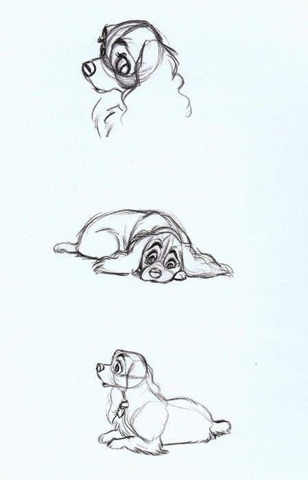 scurviesdisneyblog:  Lady Concept Sketches