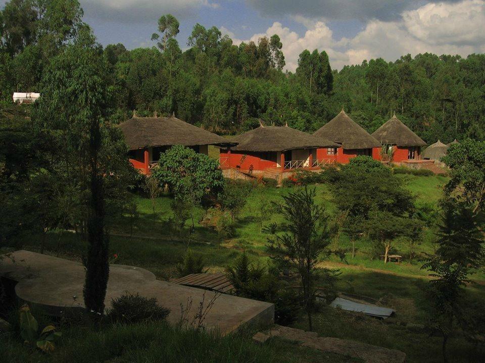 Mati Resort (Nekemte, Ethiopia
