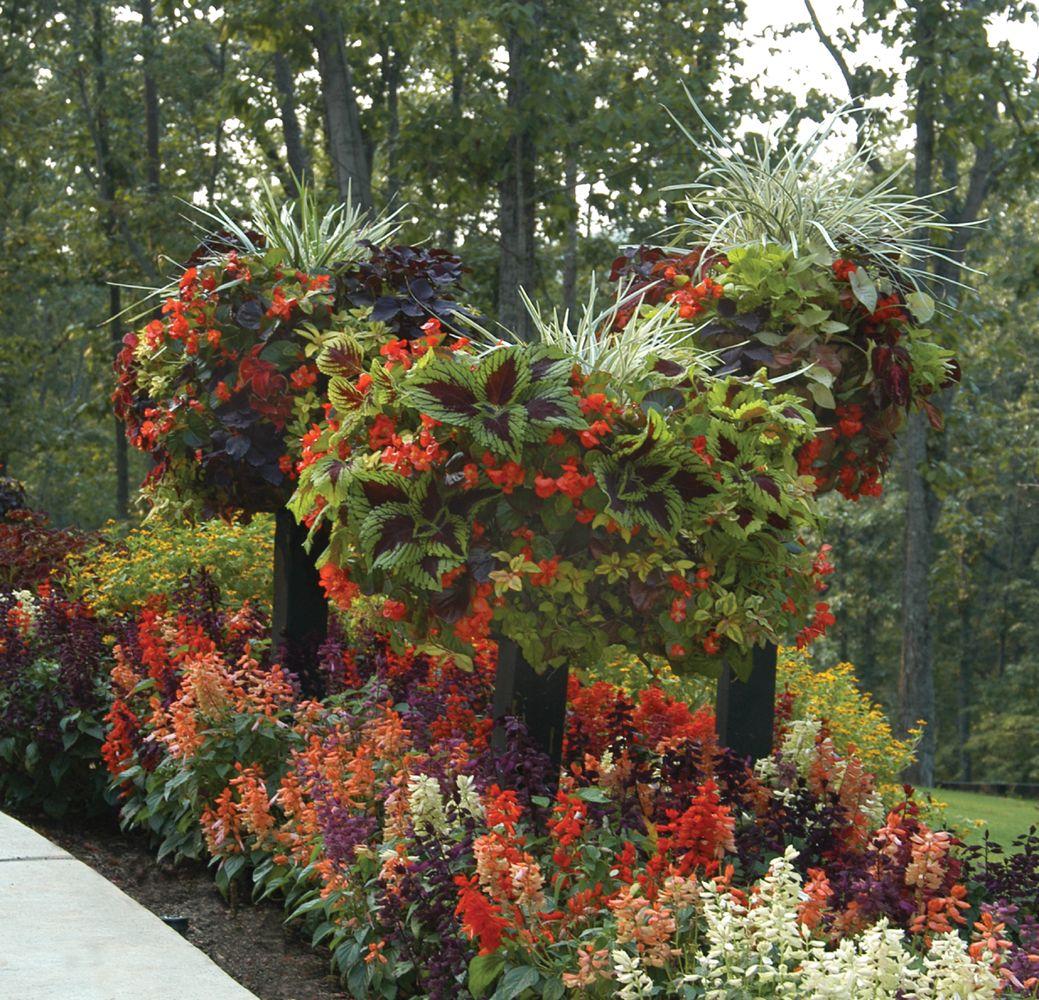 Border Columns, Basket Planters, Flower Baskets » Side Planting ...