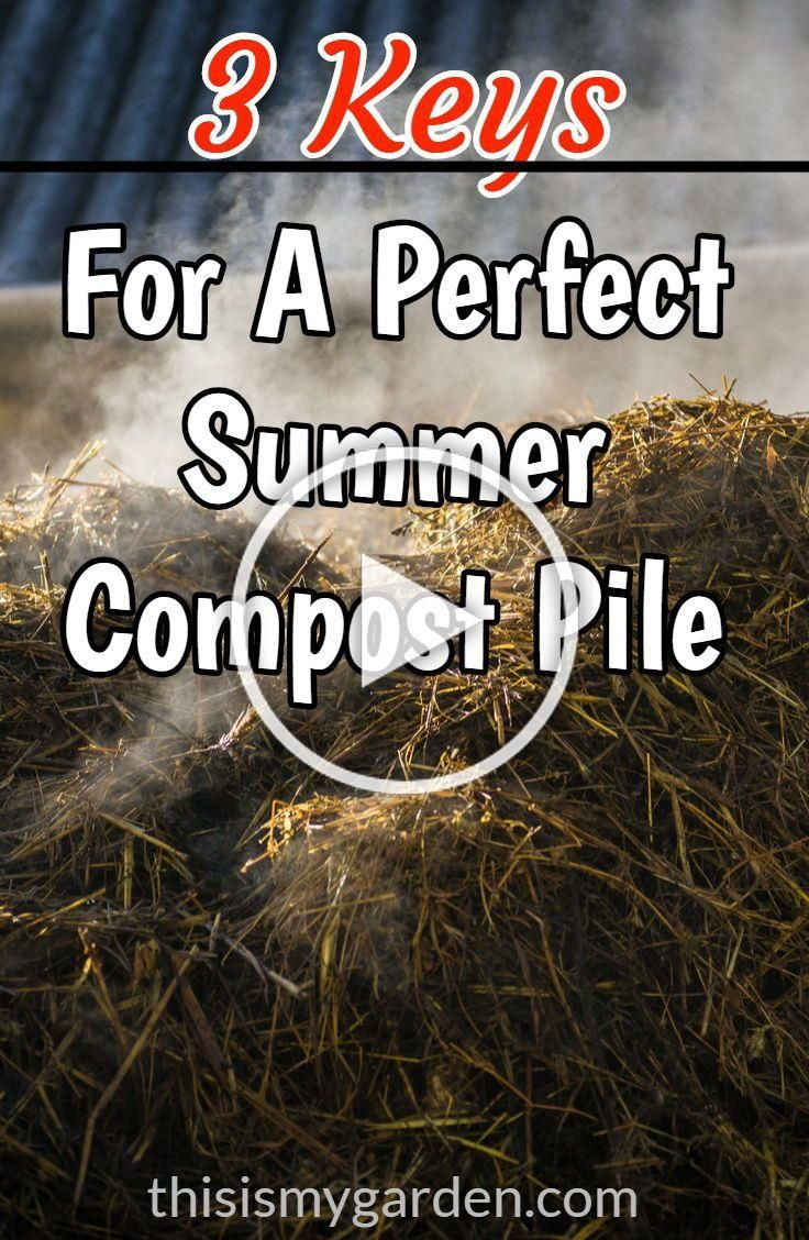 3 Keys For A Perfect Summer Compost Pile