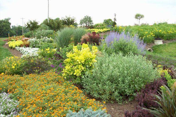 Meadow View Growers New Carlisle Ohio