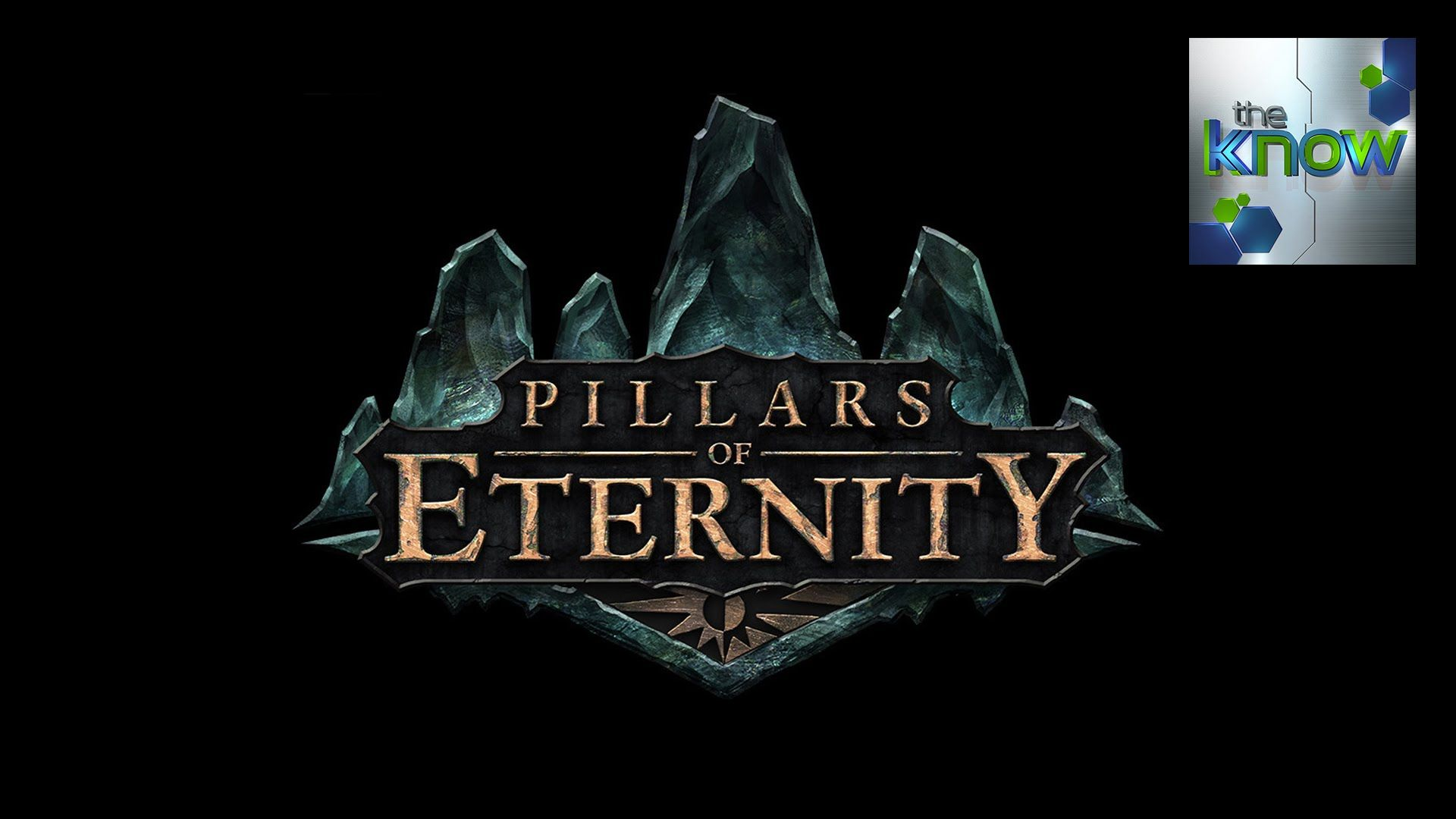 PAX South: Pillars of Eternity Interview - The Know