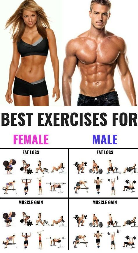 The 25 Best Exercises for Men and Women To Build Muscle - GymGuider.com