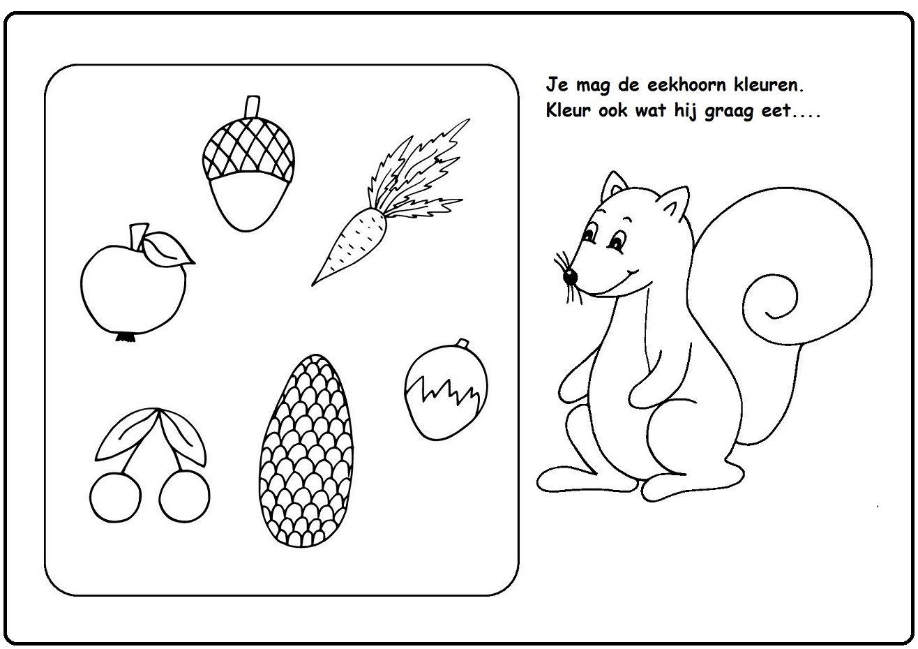 Pin On Herfst Eekhoorn Kleurplaten