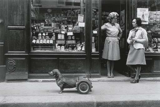 Un Chien à Roulettes, Robert Doisneau, 1977