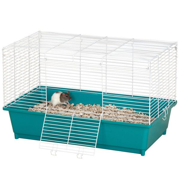 Null Small Pets Pet Home Pets