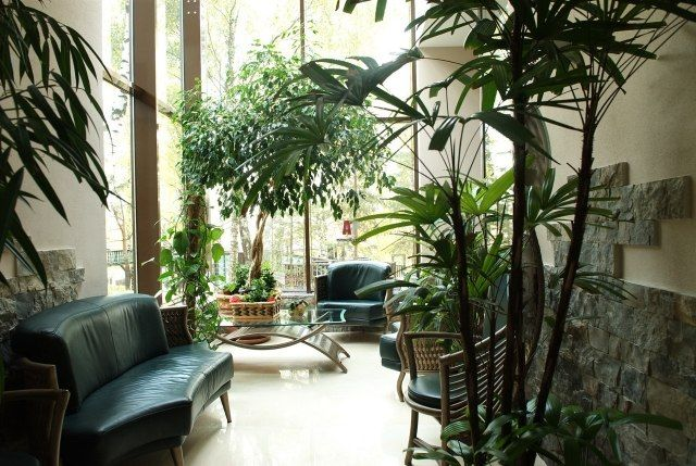 Pflanzen im Wintergarten ideen einrichten bäume möbel | Home ...