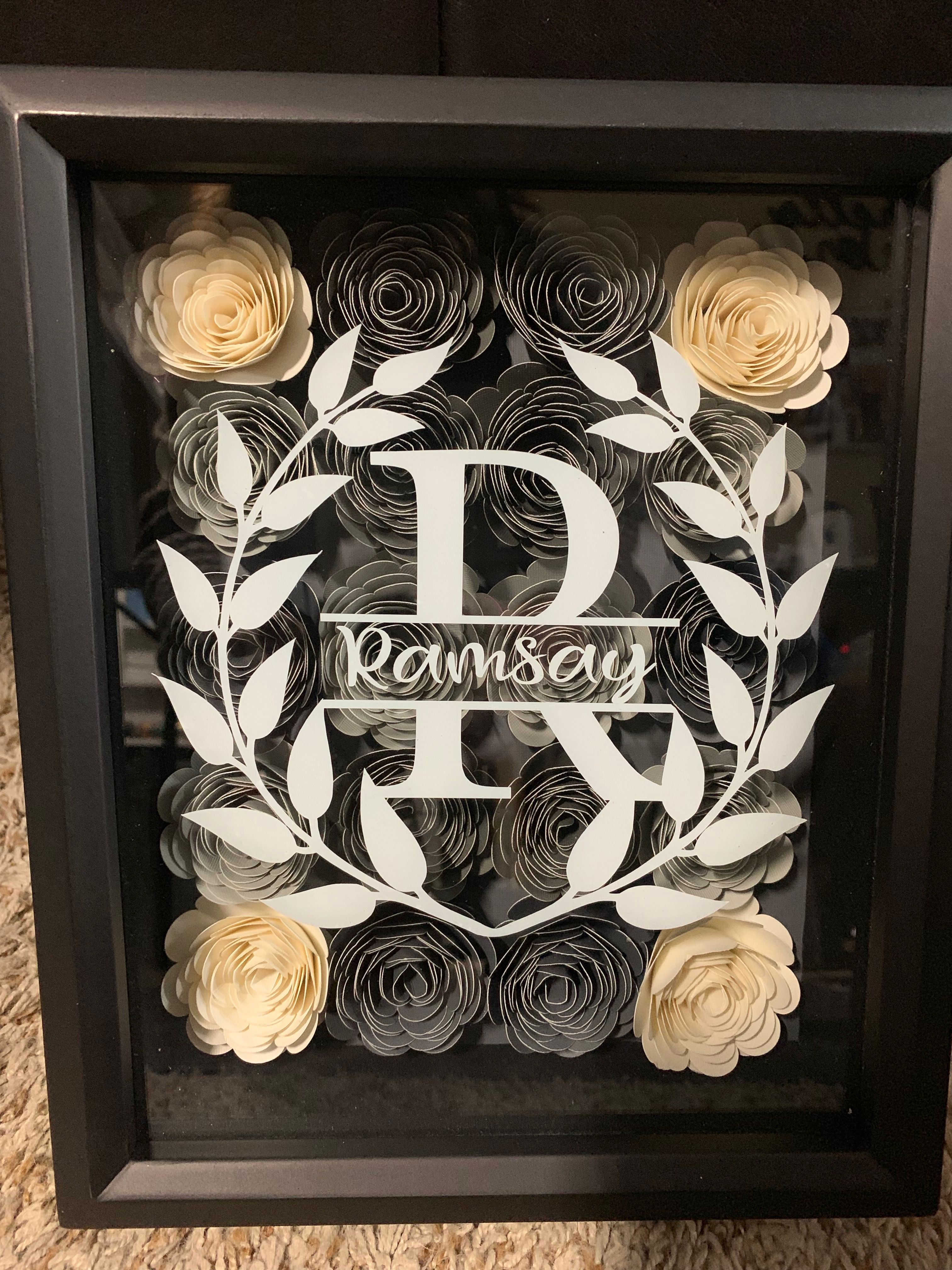 Paper Roses made from on Cricut..dr Flower shadow box