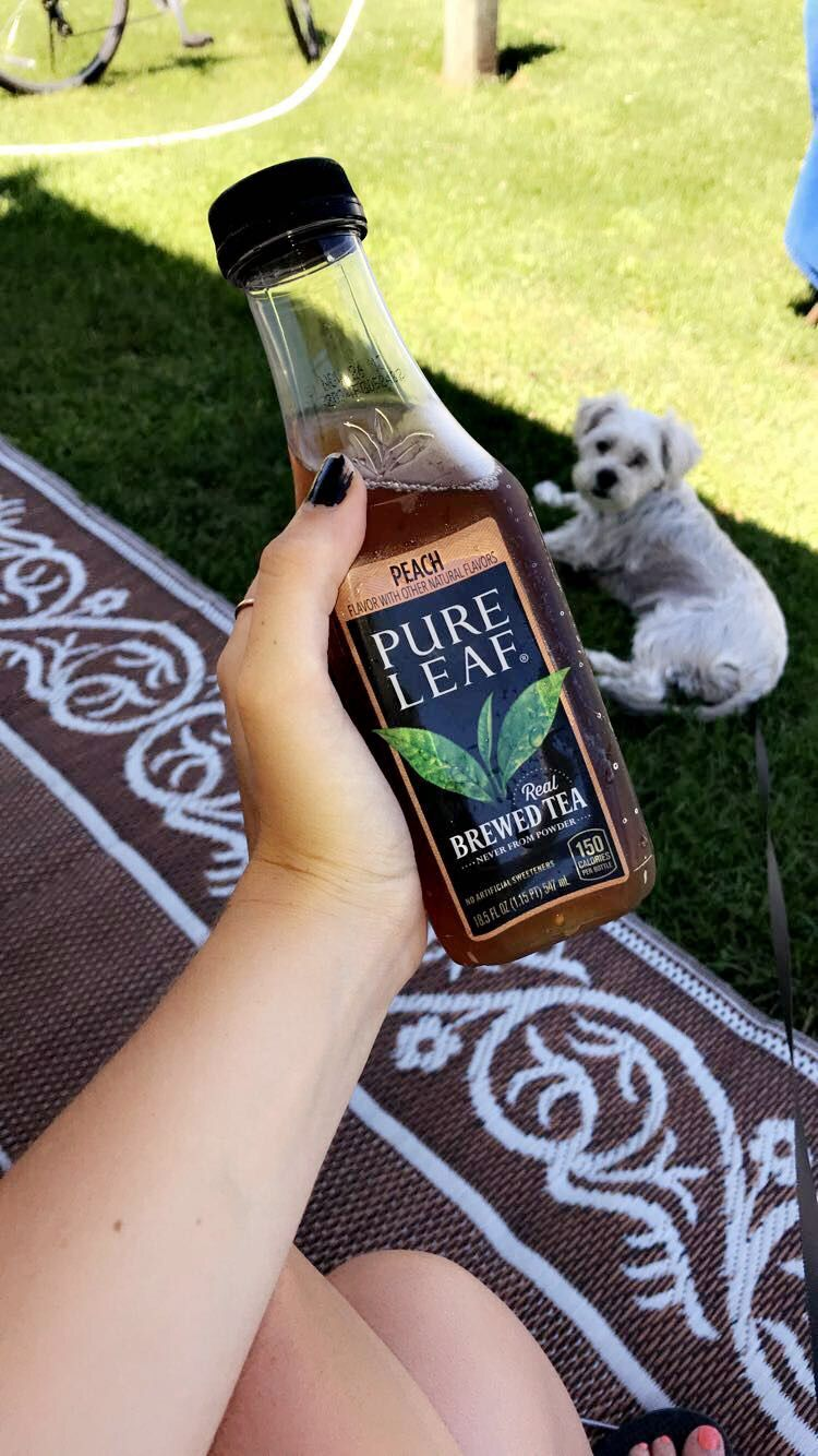 Can You Get Drunk Off Kombucha Pin By V E D A On D R I N K S Pure Leaf Tea Bottle Tea Bottle Pure Products