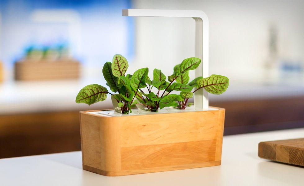 Click Grow Smart Herb Garden Gear Hungry Growing 400 x 300