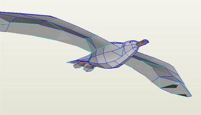 pigeon 3d model free download