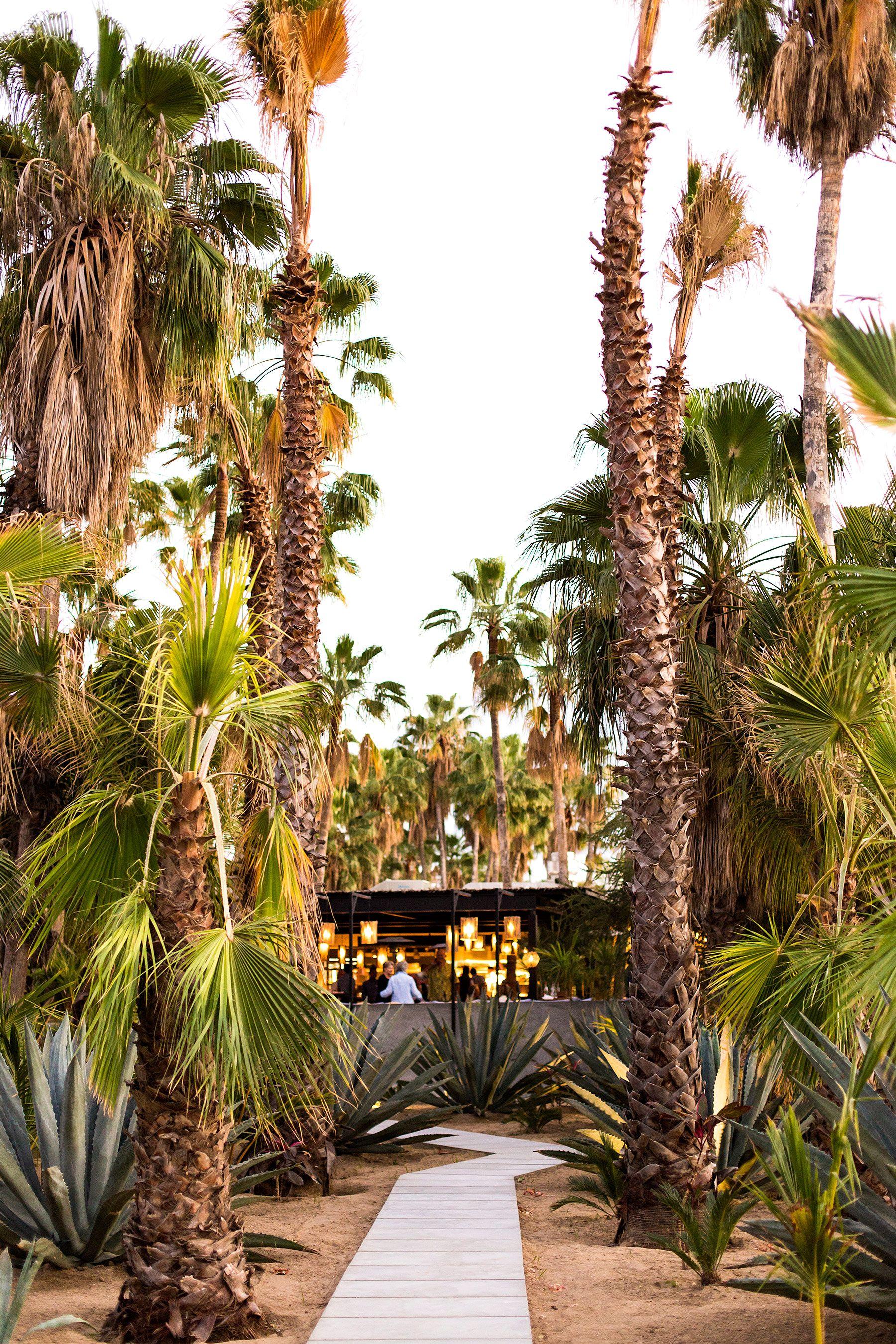 hotel acre en san jos del cabo escape explore san jose del rh pinterest es