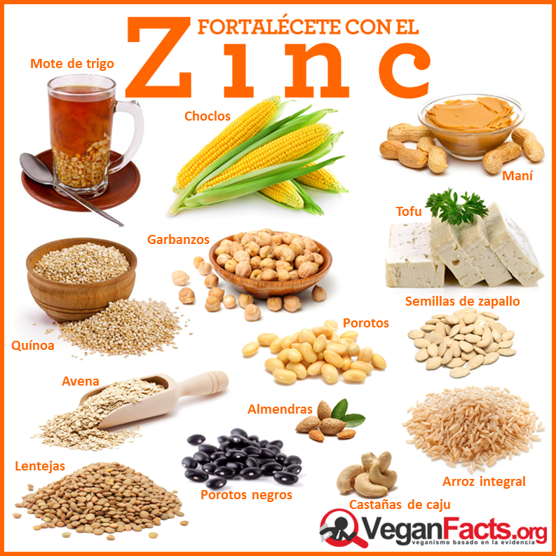 Fuentes Vegetales De Zinc Alimentos Saludables Frutas Y Verduras Beneficios Zinc Alimentos