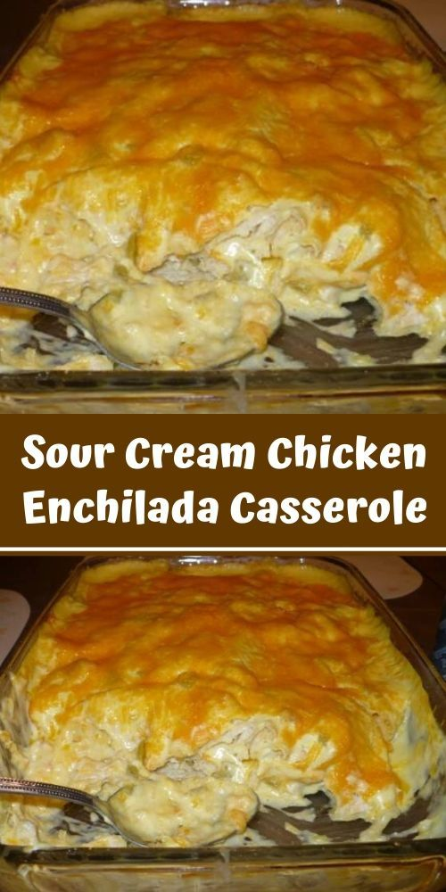 Sour Cream Chicken Enchilada Casserole In 2020 With Images Sour Cream Chicken Recipes Chicken Recipes