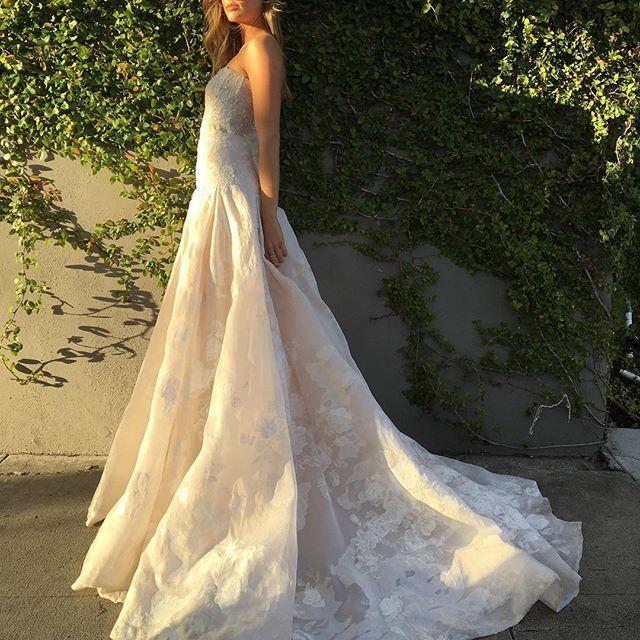 Sun Kissed Mlbride Wedding Weddings Weddinginspiration