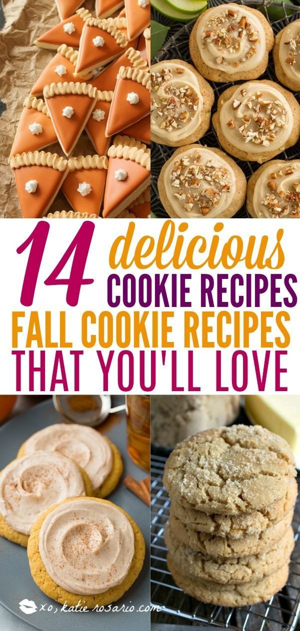Photo of 14 Easy Fall Cookie Recipes You'll Be Obsessed With – XO, Katie Rosario