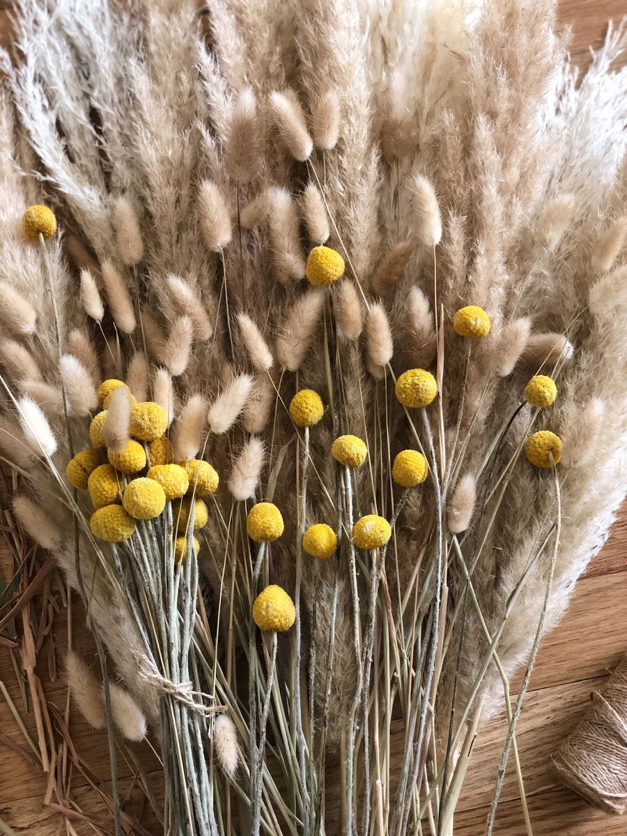 How To Combine Dried Grasses In A Perfect Arrangement Dried Flowers Dried Flowers Wedding Dried Bouquet