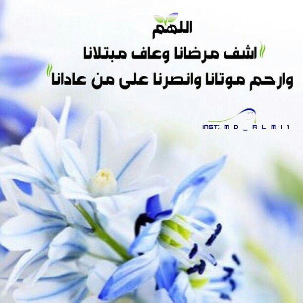 اللهم اشف مرضانا وعاف مبتلانا وارحم موتانا وانصرنا على من عادانا Plants