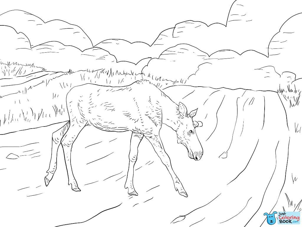 Moose Crossing A Road Coloring Page Free Printable Within Moose Crossing A Road Coloring Pages