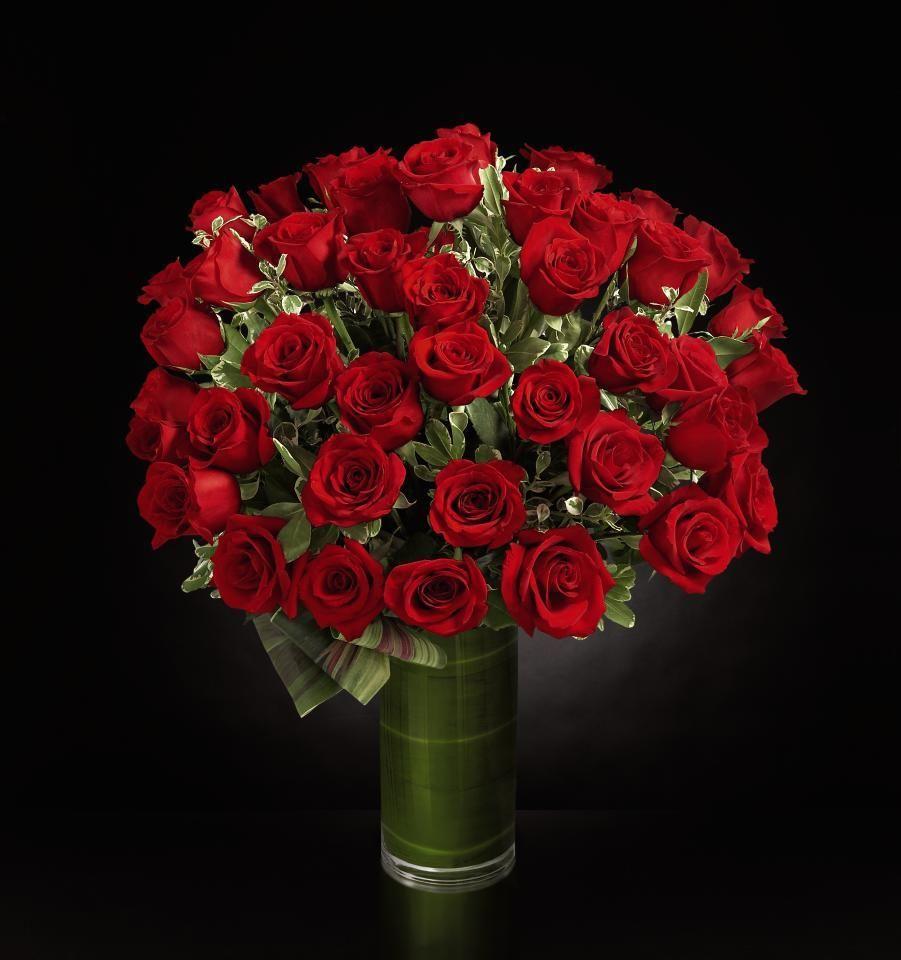 Fate Luxury Rose Bouquet 48 Stems of 24inch Premium