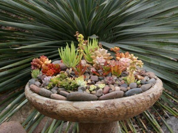 deko ideen für den garten mit steingewächs | stone - garden, Garten Ideen