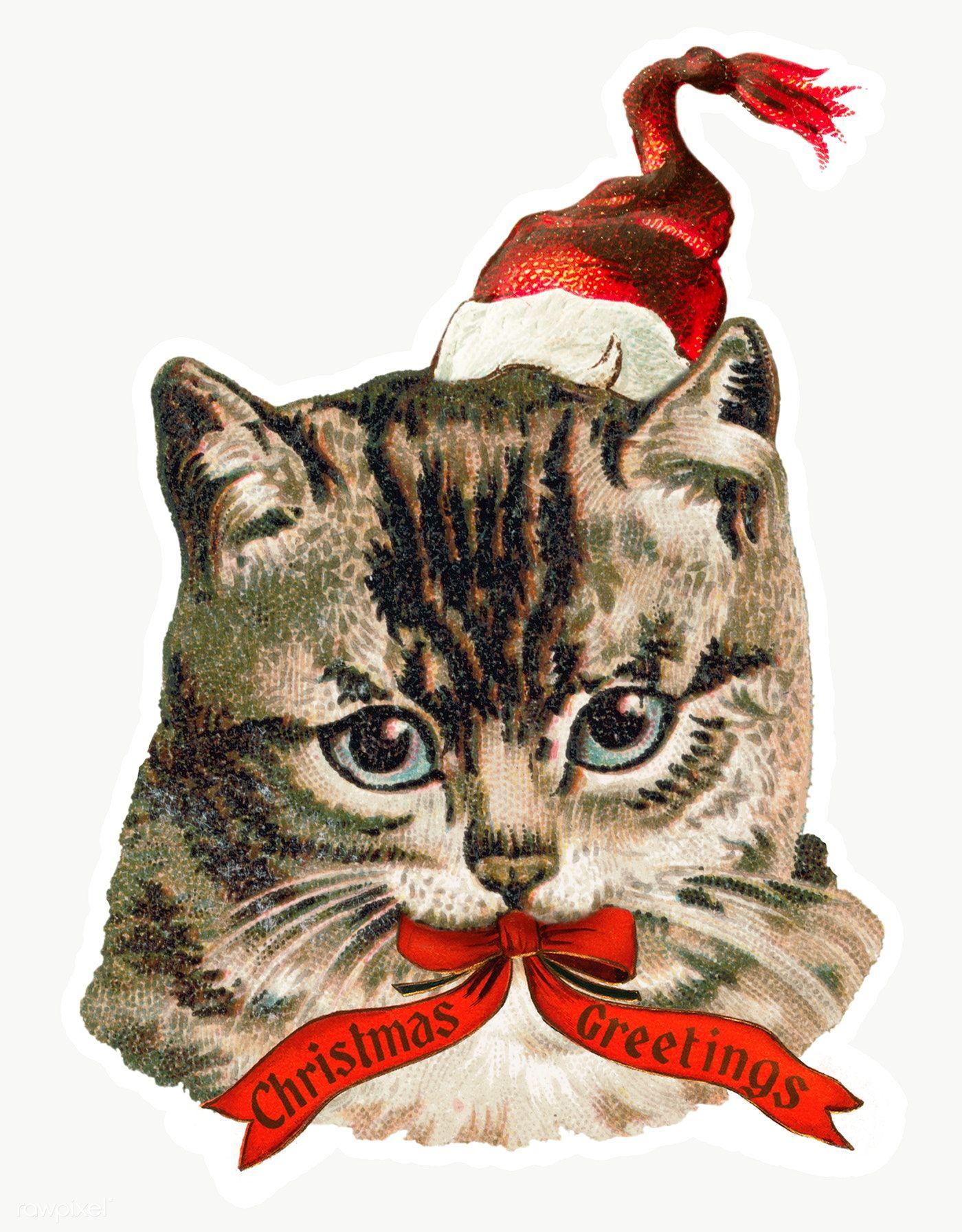 Download premium png of Cat wearing a Santa hat sticker
