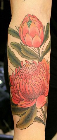Waratah Telopea Tattoo Open And In Bud Pretty Tattoos Sleeve Tattoos Inspirational Tattoos