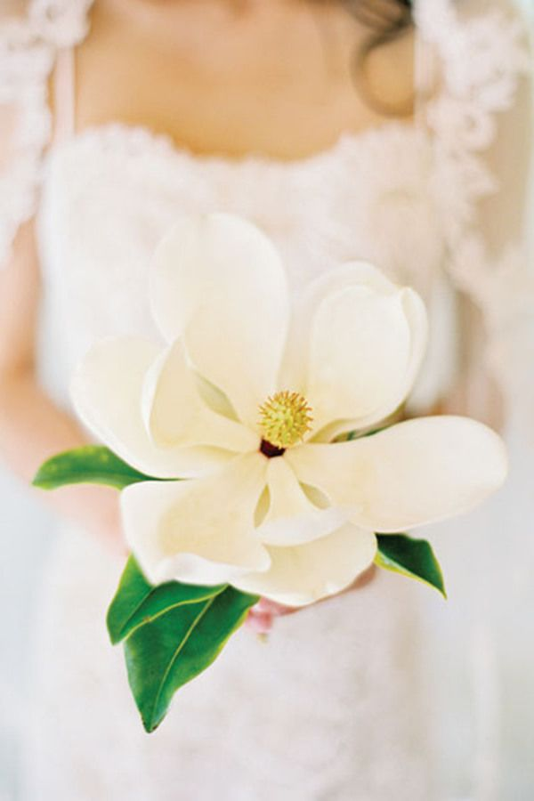 Top 10 spring wedding flowers names and photos spring wedding top 10 spring wedding flowers names and photos httpweddinginclude201603top spring wedding flowers names and photos mightylinksfo