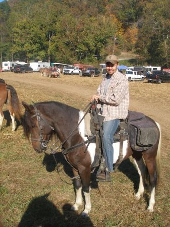 standardbred gelding - $2500 (southern indiana)   Gelding ...