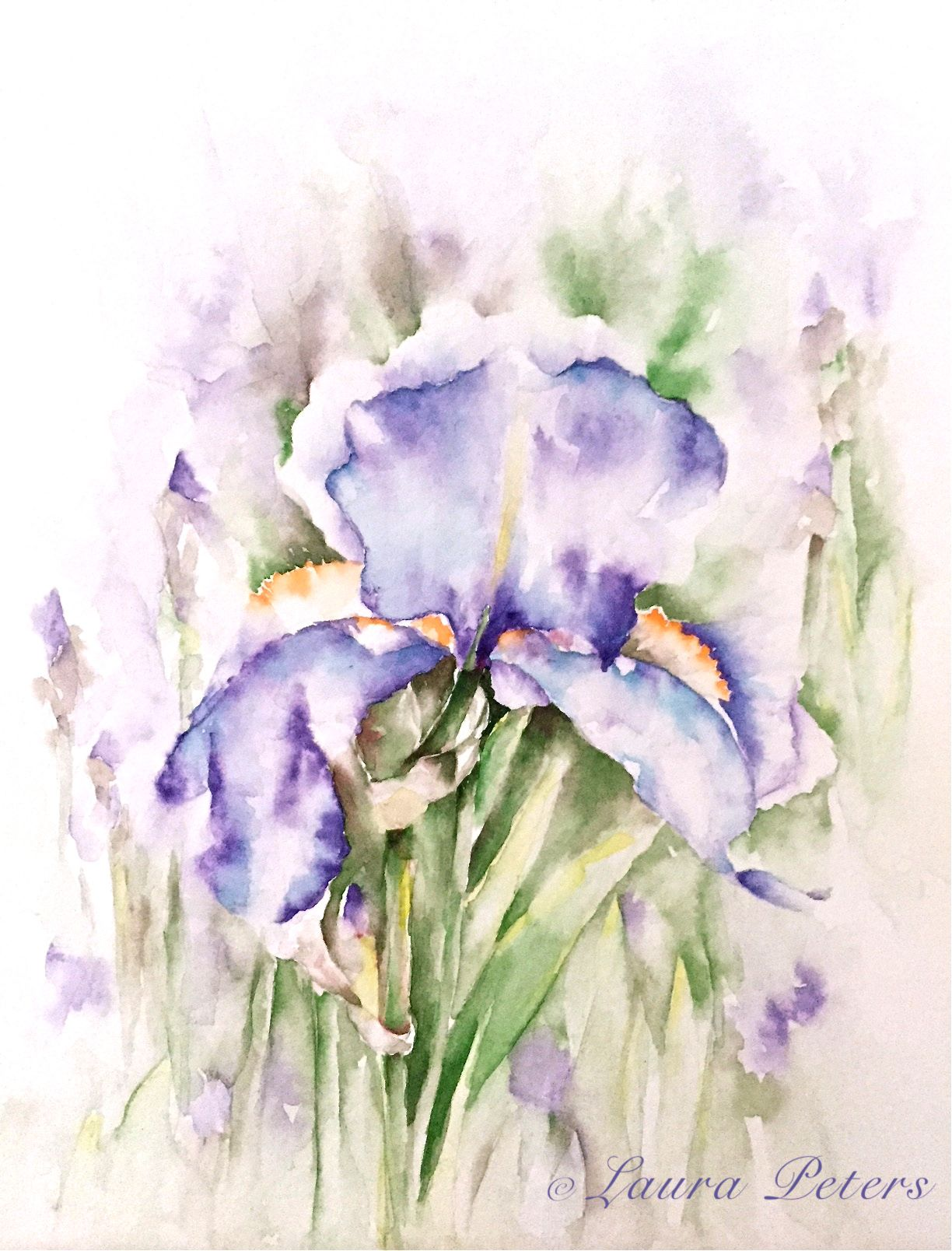 Watercolor Iris By Laura Peters Join Us At Antonella Art Studio