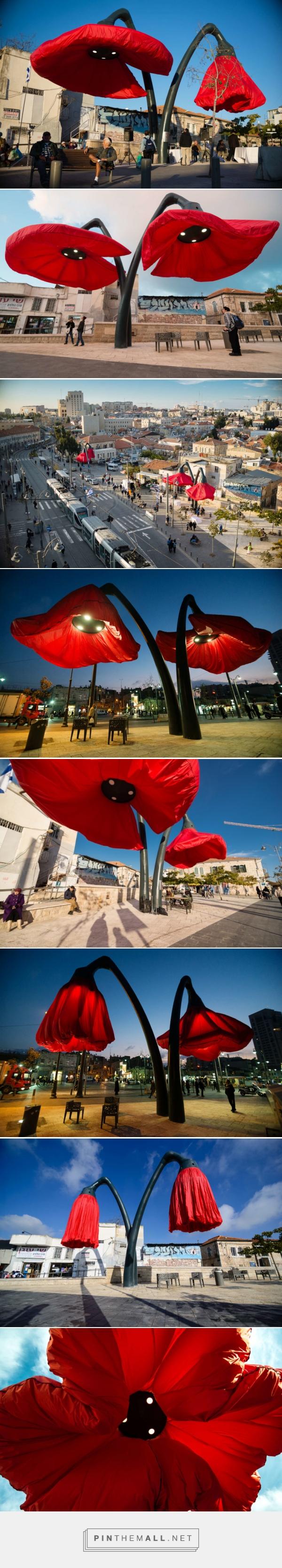 Maki na placu Valero I flowers on valero sqaure| Inspirowani Naturą